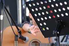 Sommerkonzert-2014-Donaustrand113