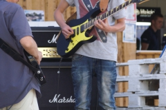 Sommerkonzert-2014-Donaustrand132