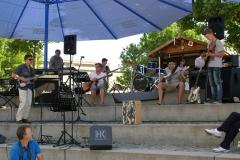 Sommerkonzert-2014-Donaustrand143