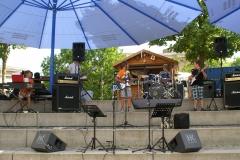 Sommerkonzert-2014-Donaustrand24