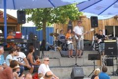 Sommerkonzert-2014-Donaustrand62