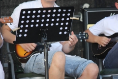 Sommerkonzert-2015-Bürgerfest46
